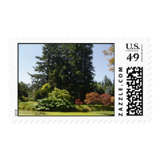 Shades of Beauty Nature Scene Postage Stamp