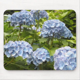 Shades of Blue Hydrangeas Mouse Pad