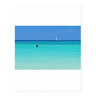 Shades of Blues.JPG Postcard