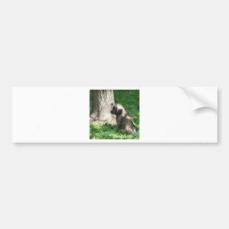 Shades Of Grey Puppy Tree Bumper Sticker