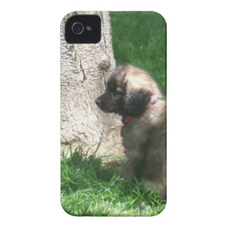Shades Of Grey Puppy Tree Case-Mate iPhone 4 Case