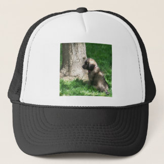 Shades Of Grey Puppy Tree Trucker Hat