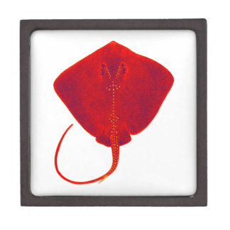 SHADES OF RED JEWELRY BOX