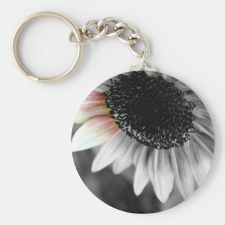shades of sun keychains