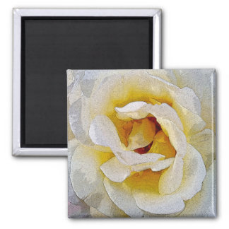 shades of white to yellow magnet