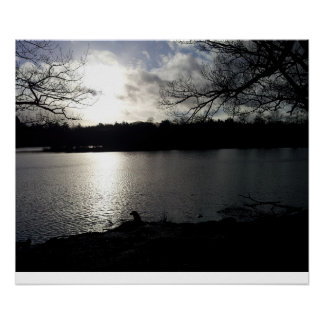 Shadow and sunlight by the lake poster