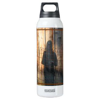 Shadow Being 16 Oz Insulated SIGG Thermos Water Bottle