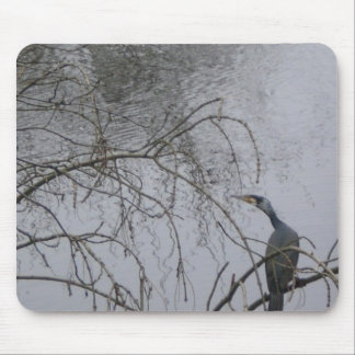 Shadow bird gazing ate water mouse pad