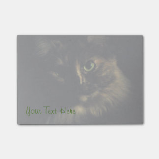Shadow Cat Art Photography Green Eyes Kitty Post-it Notes
