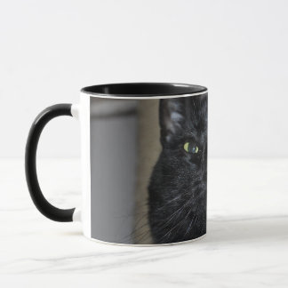 Shadow Disapproves Mug