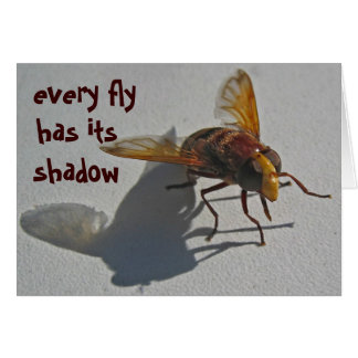 shadow fly card
