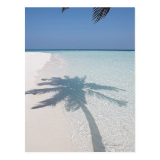 Shadow of a palm tree on a deserted island beach postcard