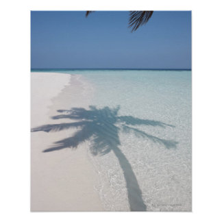 Shadow of a palm tree on a deserted island beach posters