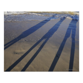 Shadow of family holding hands, on beach poster