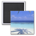 Shadow of Palm Tree 2 Inch Square Magnet