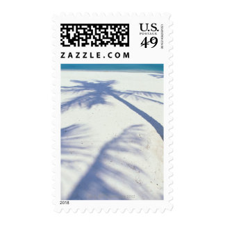 Shadow of Palm Tree 2 Postage Stamp