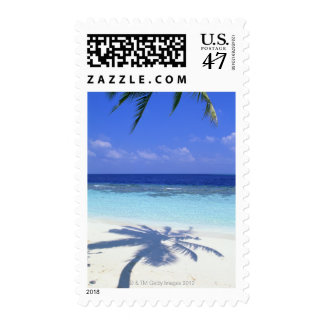 Shadow of Palm Tree Postage Stamp