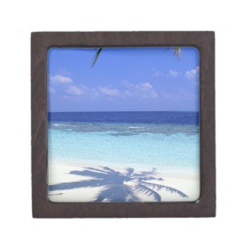 Shadow of Palm Tree Premium Gift Box