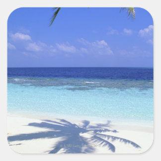 Shadow of Palm Tree Square Sticker