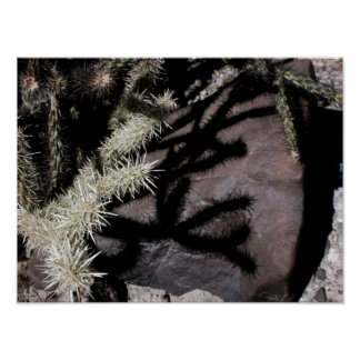 Shadow of the Cholla on desert varnish Stone Poster