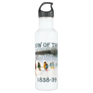 Shadow of the Owl 1838-39 Stainless Steel Water Bottle