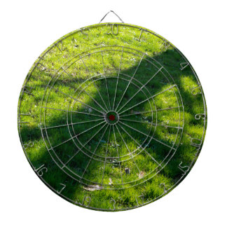 Shadow of the tree at the spring grass dartboard