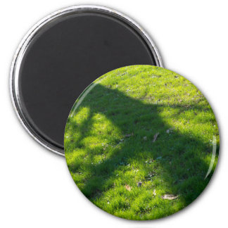 Shadow of the tree at the spring grass magnet