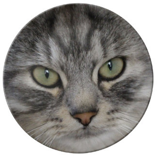 Shadow Silver Tabby Persian Cat Porcelain Plate