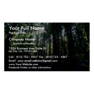 Shadowed grove from the Forest Double-Sided Standard Business Cards (Pack Of 100)