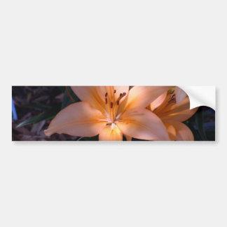 Shadowed Orange Lilies Bumper Sticker
