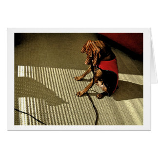 Shadowplay 1 greeting card