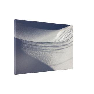 Shadows on untouched snow CC0099 Canvas Print