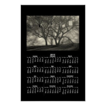 Shadows & Reflections 2012 Calendar Print