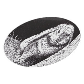 shadowy rabbit animal drawing party plate