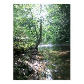 Shady Creek Postcard