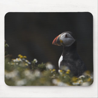 Shady Puffin Mouse Pad