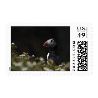 Shady Puffin Postage