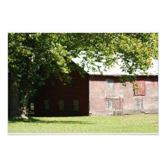 Shady Red Barn 19 x 13 Photographic Print