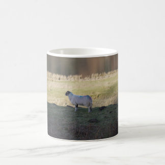 Shady Sheep Coffee Mug