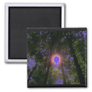 Shady Sun Rays 2 Inch Square Magnet
