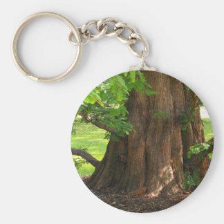 Shady Tree Basic Round Button Keychain