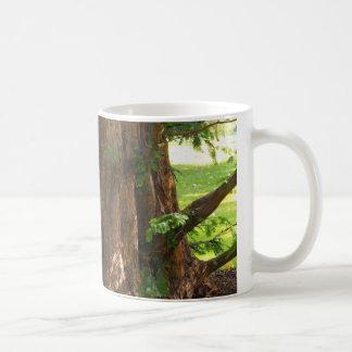 Shady Tree Coffee Mug