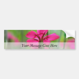 Shady Woodland Dianthus Bumper Sticker