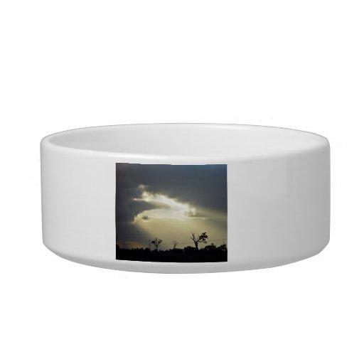 Shafts of sunlight through clouds cat bowls