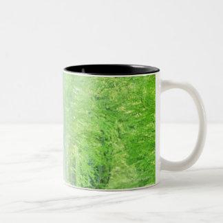 Shafts of Sunlight Two-Tone Coffee Mug