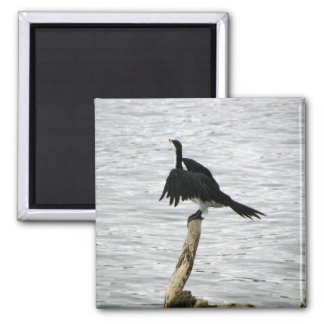 Shag Drying Wings Magnet