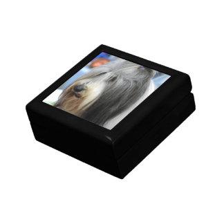 Shaggy Bearded Collie Gift Box