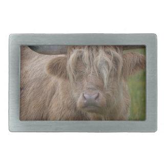 Shaggy Blonde Highland Cow Rectangular Belt Buckles