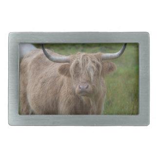 Shaggy Blonde Highland Cow Rectangular Belt Buckle
