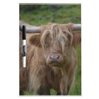 Shaggy Blonde Highland Cow Dry-Erase Board